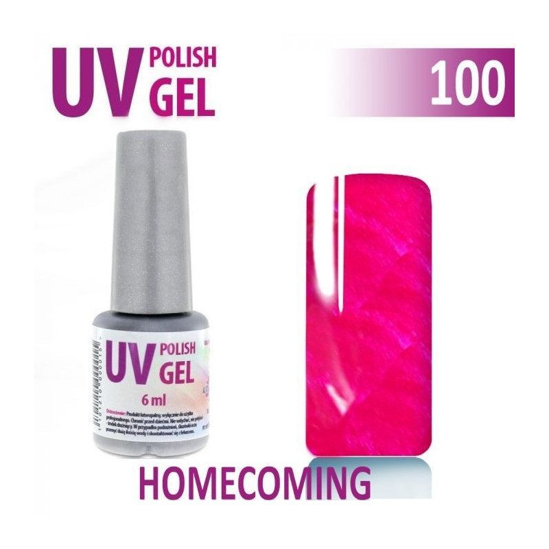 100.UV gel lak na nehty hybridní HOMECOMING 6 ml
